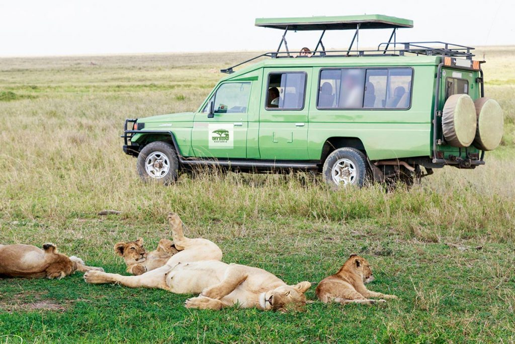 Safari 4x4 Car Rental Services in Uganda